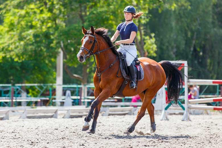 Preparazione Equitazione Cavallo Fitness Brianza